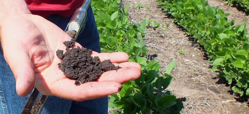 Organismos de control y certificación en agricultura ecológica