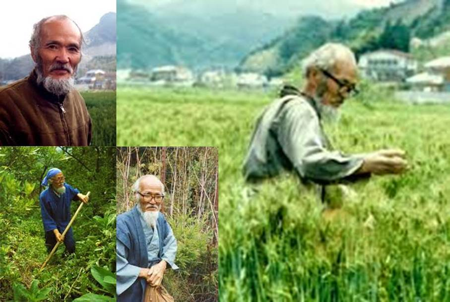 ¿Qué es la agricultura natural?. El método Fukuoka